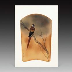 copy of Hummingbird printed...